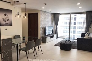 Low rental 2 bedroom apartment in Midtown with full modern and nice furniture
