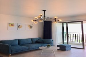 Cheap 2 bedroom apartment for rent in District 7 with full furniture and nice view